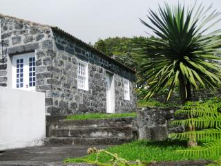 Casa Azalea - ocean's view terrace - Horta vacation rentals