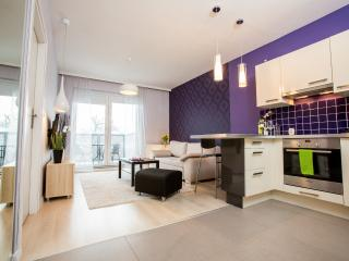 1 bedroom Condo with Internet Access in Wroclaw - Wroclaw vacation rentals