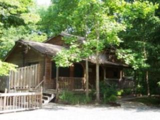 Cedar Chalet - Townsend vacation rentals