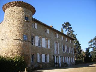 Hopkins gite at Chateau de Montoussel - Teyssode vacation rentals