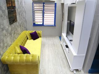 A BEATIFUL COZY FLAT IN CENTER - Istanbul vacation rentals