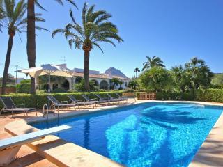 Entre Palmeras - Alicante Province vacation rentals