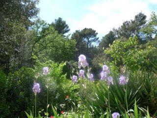 Nature and Quiet near Aix en Provence - Aix-en-Provence vacation rentals