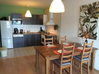 Beautiful Apartment in Lorsch - Free WiFi - Lorsch vacation rentals