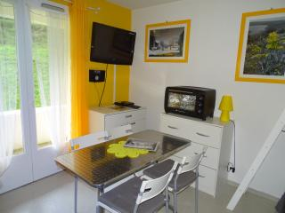 Cozy Ambeyrac Studio rental with Internet Access - Ambeyrac vacation rentals