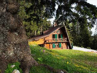 Comfortable Chalet with Deck and Internet Access - Cerklje vacation rentals