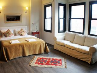 Luxury Suite in Sultanahmet #1 - Istanbul vacation rentals