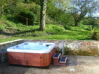 Forest Lodge private Hot Tub, Mid Wales SY16 4DW - Newtown vacation rentals