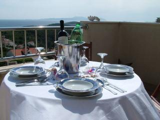 LUXURY APARTMENT IN VILLA , HVAR TOWN, WITH SEA VIEW  FOR 4/5 P - Hvar vacation rentals