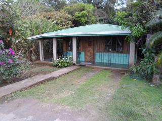 Lake Arenal, Costa Rica, Casa Dos Toucan - Lake Arenal vacation rentals