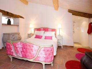 Red Y Pink gite - Chateau de Montoussel - Toulouse - Toulouse vacation rentals