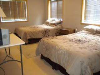 Romantic 1 bedroom Apartment in Crosslake - Crosslake vacation rentals