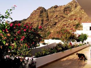 House in Bajamar (North of Tenerife) with garden - Roco Llisa vacation rentals