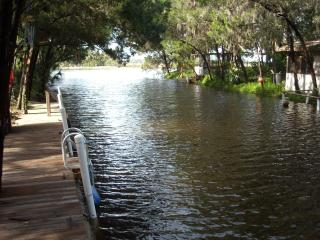 Winter Rentals Available Olde Homosassa Hideaway! - Homosassa vacation rentals