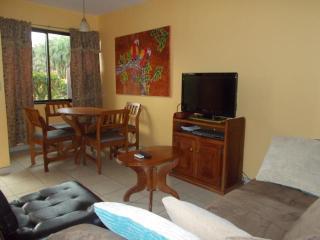 Happy Oasis unit 21 - Playas del Coco vacation rentals