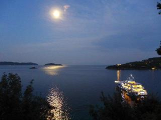 Beachfront Greek Villa in Skiathos with Semi-Private Sandy Beach - Kanapitsa vacation rentals