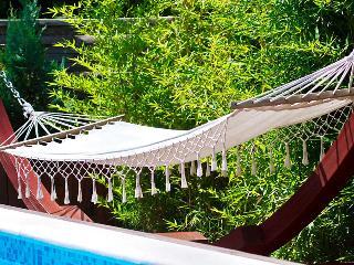 Villa Macan for awesome holiday - Svetvincenat vacation rentals