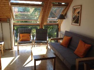 Cozy Condo with Internet Access and Tennis Court - Saint-Lary-Soulan vacation rentals