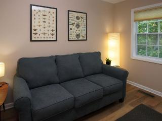 The Loungeport 5 minutes from everything!! - Asheville vacation rentals