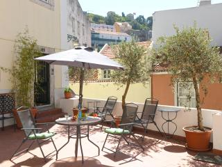 Costa do Castelo III - Lisbon vacation rentals