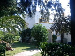 Nice 2 bedroom House in Carvoeiro - Carvoeiro vacation rentals