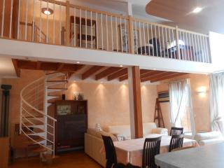Luxirious 3 bedroomed near Disneyland Paris - Chessy vacation rentals