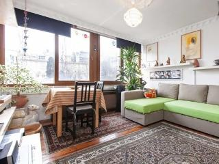 The Dogs -Roof top terrace flat with view - Istanbul & Marmara vacation rentals