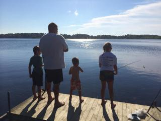 Getaway Lake Front Cottage on Lincoln Lake - Stanton vacation rentals