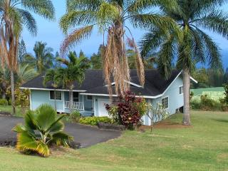 Nice 3 bedroom House in Laupahoehoe - Laupahoehoe vacation rentals