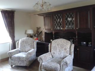 2-center holiday in Ireland - Carrigallen vacation rentals