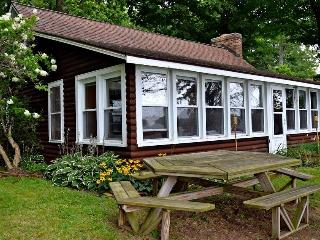 Rustic Diamond Lake Island Waterfront Cottage - Three Rivers vacation rentals