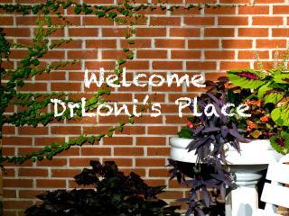 Tree-Top 3 Bedroom Apartment - Brooklyn vacation rentals