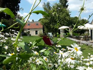 Nice Bed and Breakfast with Internet Access and Central Heating - Argentan vacation rentals