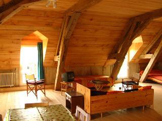 AUROISUD Loft au lac de la Forêt d'Orient (10Aube) - Geraudot vacation rentals