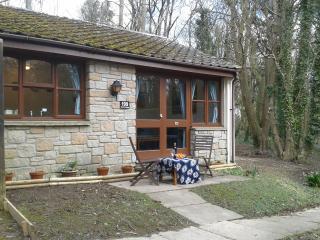Beech Cottage, Lelant, St Ives - Lelant vacation rentals