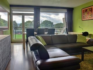 Room Nest 2 - 1 Bedroom - Liege Region vacation rentals