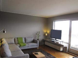 Quai de Rome - Apartment - Liege vacation rentals