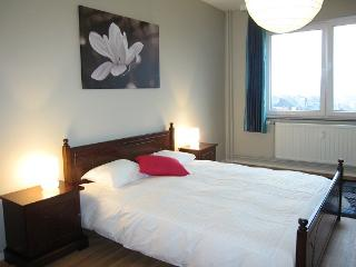 Pont de Fragnee - 2 Bedrooms - Limburg vacation rentals