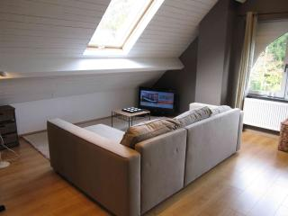 Nice Condo with Internet Access and Stove - Liege vacation rentals