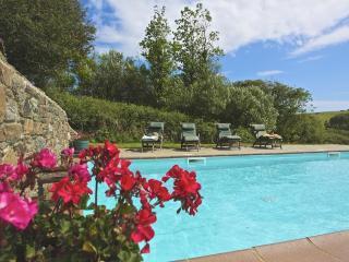 Broad Downs Farmhouse - Malborough vacation rentals