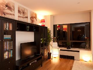 Stylish Studio in Luxury High Rise- $100 for Nov! - New York City vacation rentals