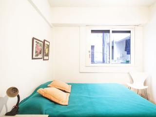 Recoleta One Bedroom! Fast WIFI - Buenos Aires vacation rentals