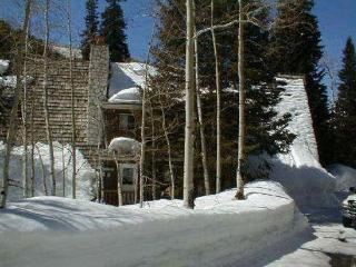 Bear Trap Lodge, minutes from ski resorts! - Brighton vacation rentals