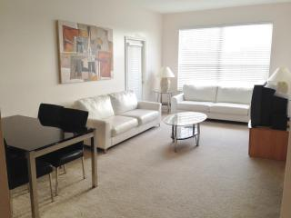 Beautiful 3 Bedroom / 2 Bath Condo Near by Disney - Four Corners vacation rentals