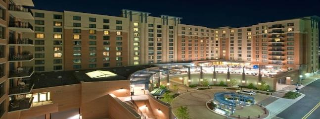Wyndham Resort National Harbor - 2 BR Condo - Image 1 - Oxon Hill - rentals