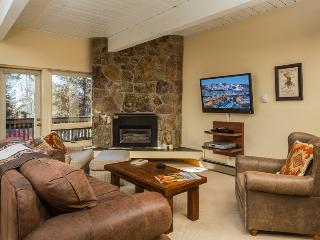 Ptarmigan House:Ski-In/Ski-Out. Discount Lift Tix* - Steamboat Springs vacation rentals