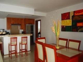 Luxury 2 Bedroom Apartment In Playa Del Carmen - Riviera Maya vacation rentals