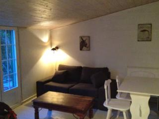 Cozy Ars-en-Re Studio rental with Internet Access - Ars-en-Re vacation rentals