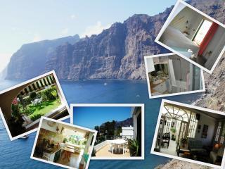 Los Gigantes 5 Star Villa+Seaview+Garden+BBQ - Acantilado de los Gigantes vacation rentals