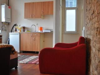 Cosy Apartment walking distance to Taksim Square - Istanbul vacation rentals